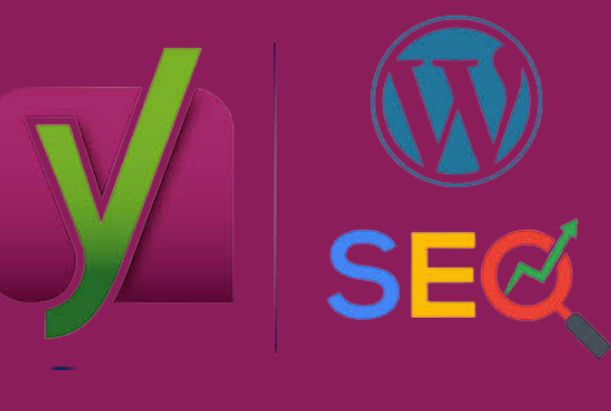 I will do complete SEO for wordpress