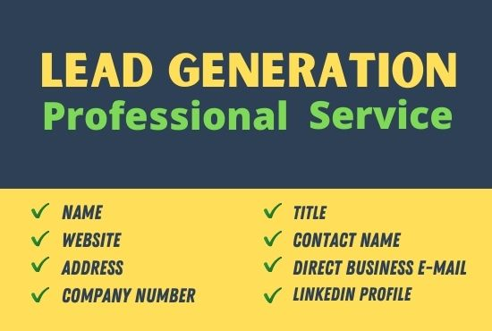 I will do professional b2b lead generation and build targeted contacts list