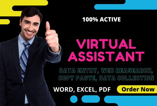 I will be your active fast virtual assistant for web research and data entry