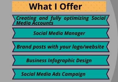 social media manager and social media ads campaign