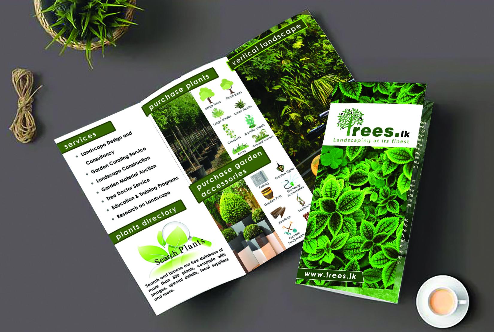 I will design business flyer,  leaflet,  trifold brochure,  postcard