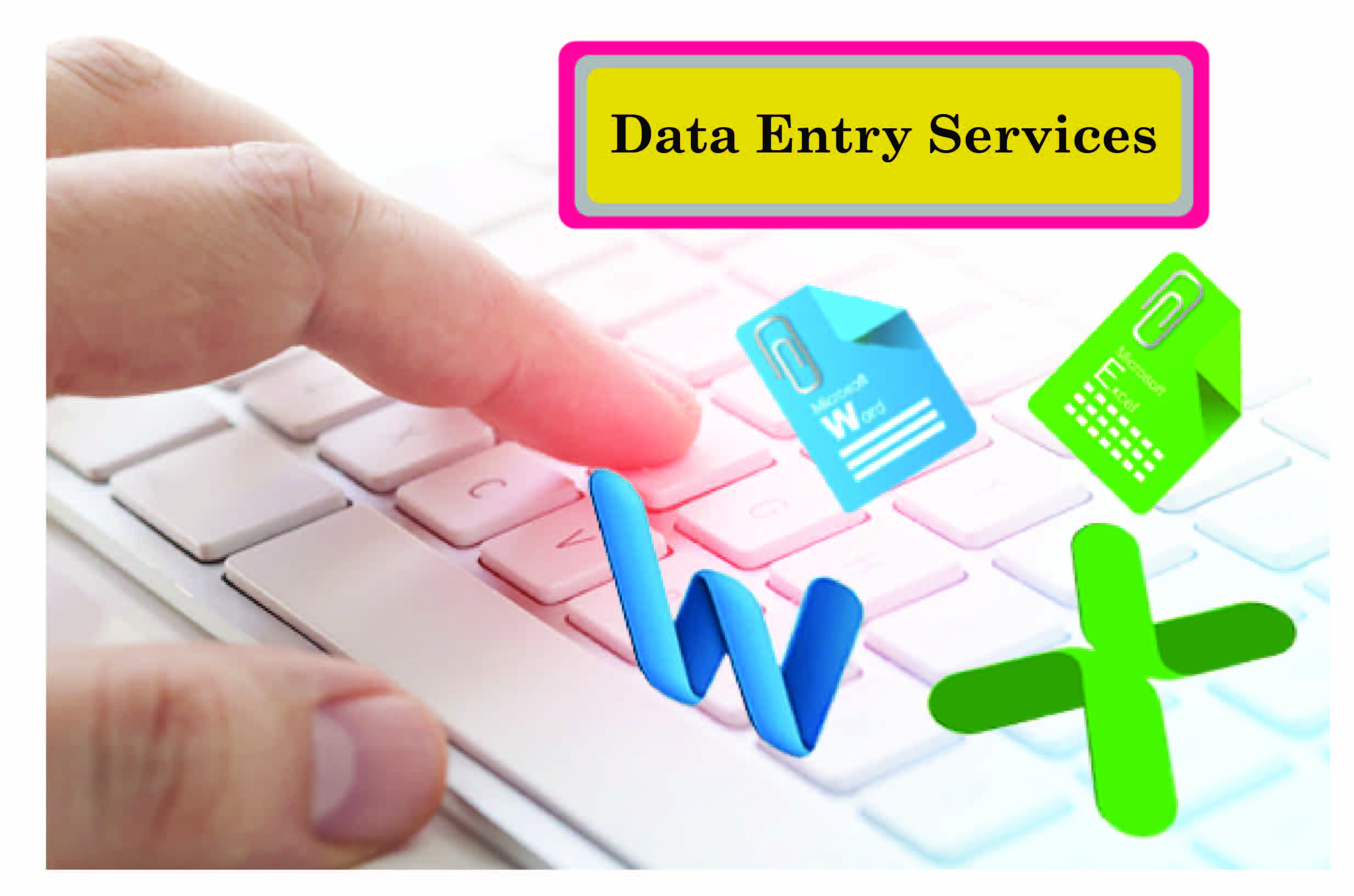 I am professional in data entry worker