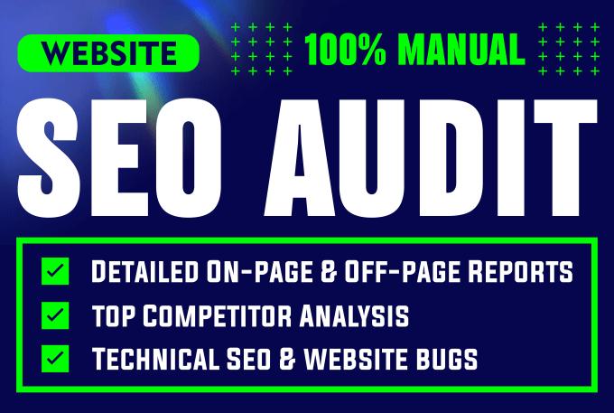 I will make website audit report