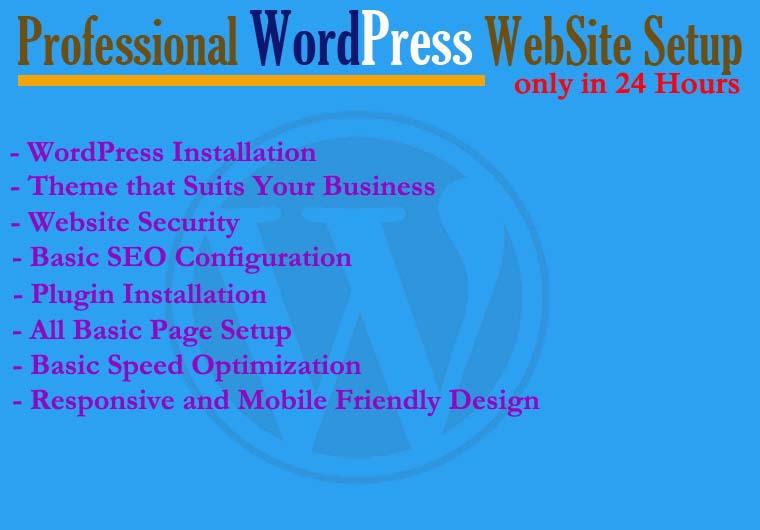 Professional Responsive WordPress WebSite Setup in Just 24 Hours