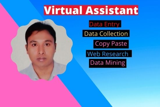 I will do data entry with web research properly