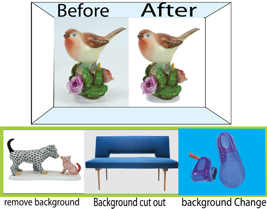 I will do Clipping Path, Background Removal and Photoshop editing