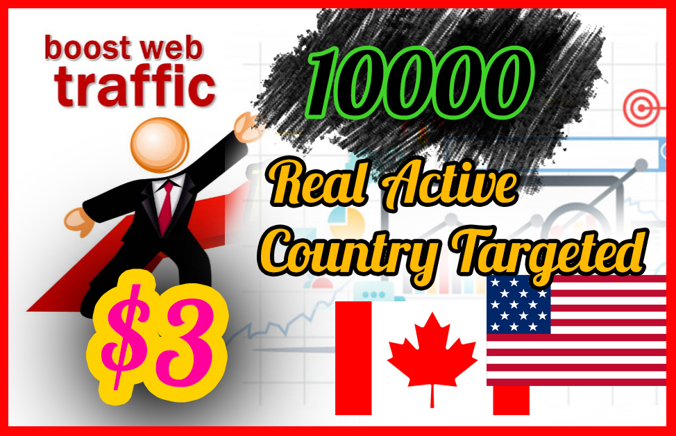 100, 00 Real Active Targeted Country Website Traffic For 10 Days Quikly