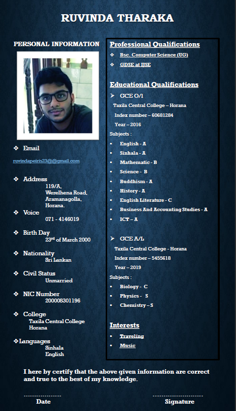 I can make a professional and attractive CV