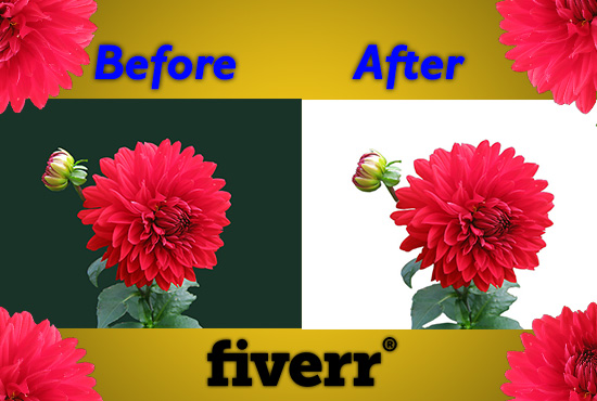 I will do professionally background removal in your images.