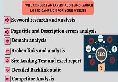 I will conduct expert audit and launch an SEO campaign for your website