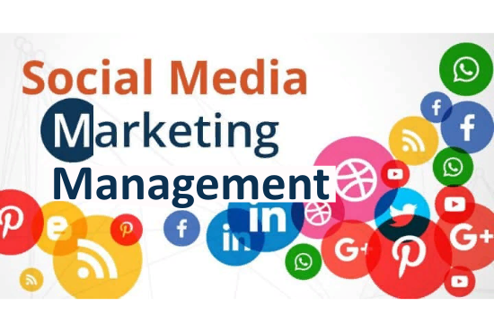 I will do Professional Social Media Marketing Management