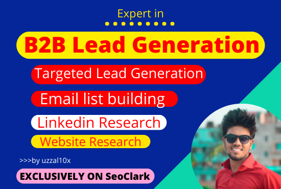 I will do B2B top target lead generation