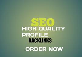 I will build 50 high quality profile backlinks with high da pa