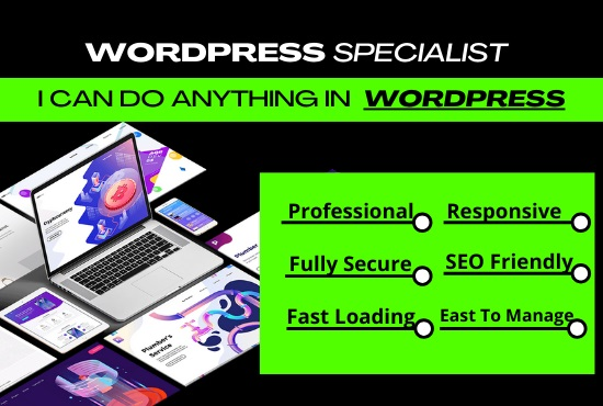 I will design pro business or ecommerce wordpress website