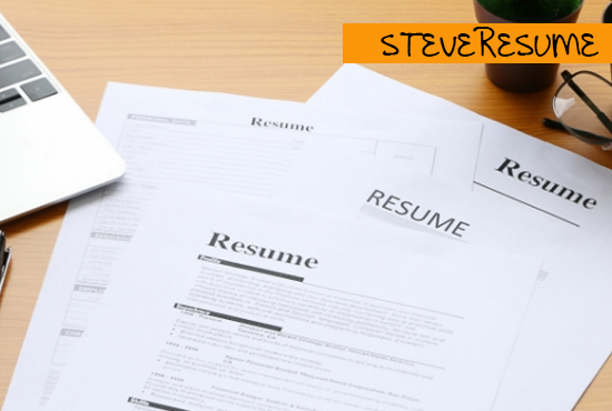 I will provide a professional resume/CV writing service