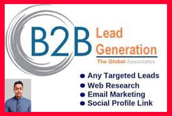 I will do b2b lead generation and build email list