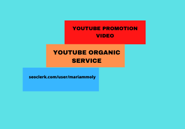I will do youtube promotion video