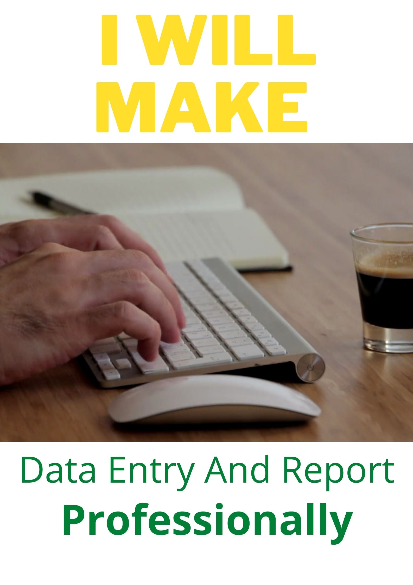 Create Data entry And Report Professionally
