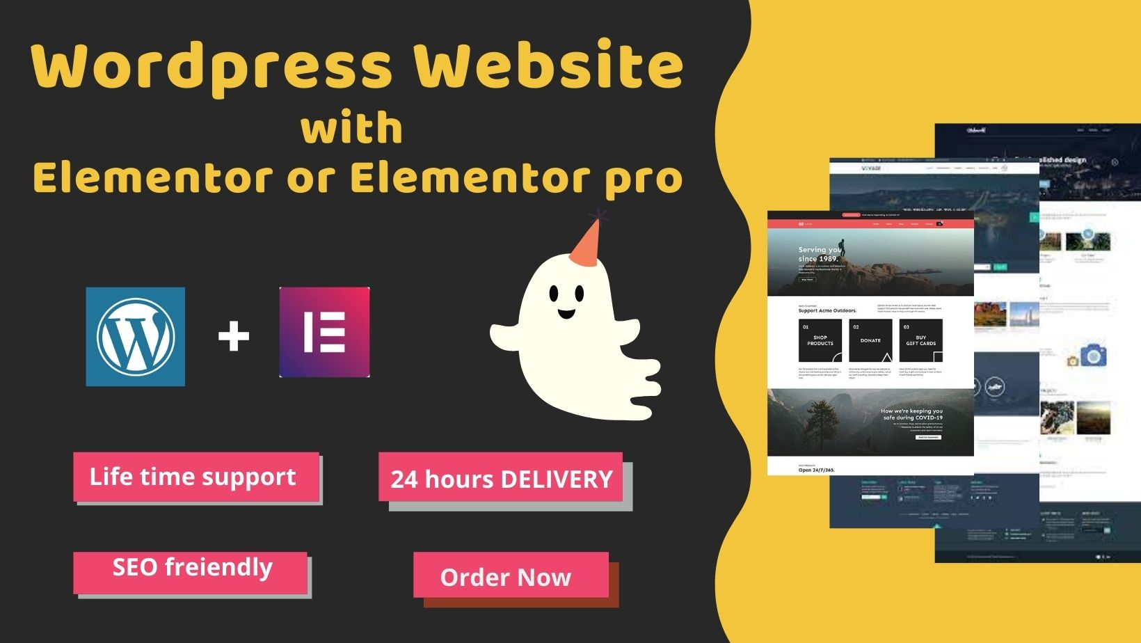 I will Design, redesign, duplicate any website with Elementor pro