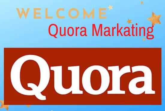 G reat and your website with 50 Quora answer