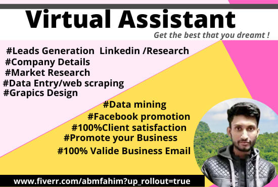 I will be your personal virtual assistant with skillfully