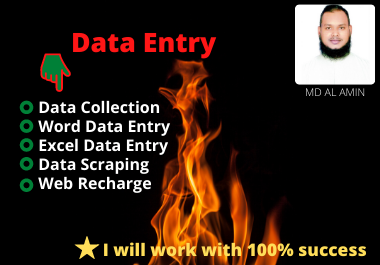 I will be data collection,  word data entry,  excel data entry,  web research,  web scraping.