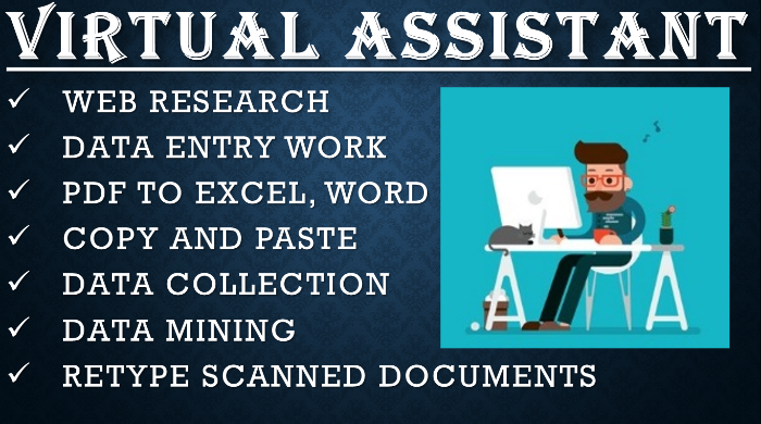 I will do any type of data entry,  copy paste,  web research,  data mining and excel data entry