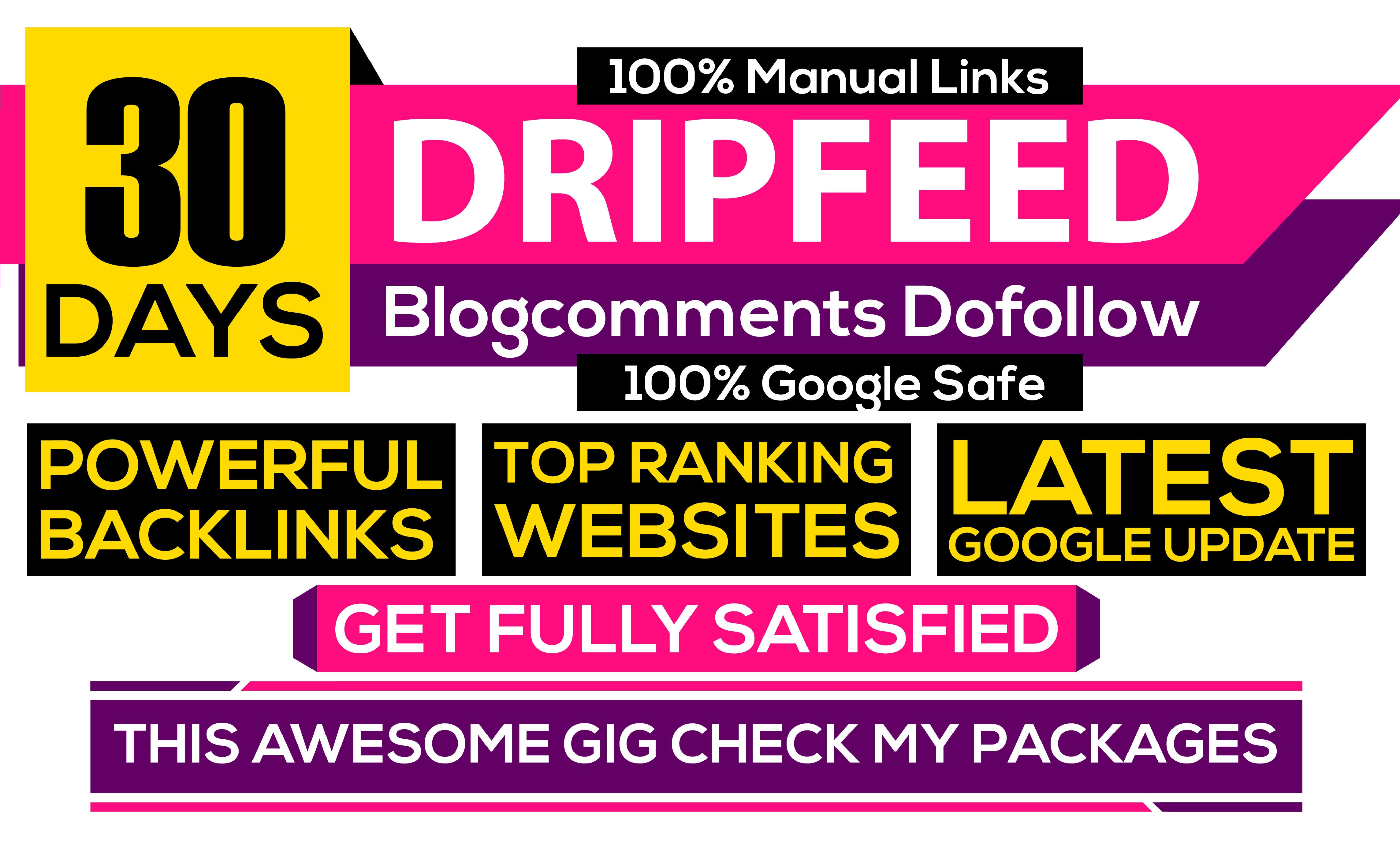 I will submit 30 blog comments daily for 30 days dripfeed