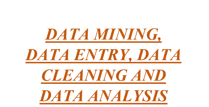 I will do data entry,  web research and data CLEANING