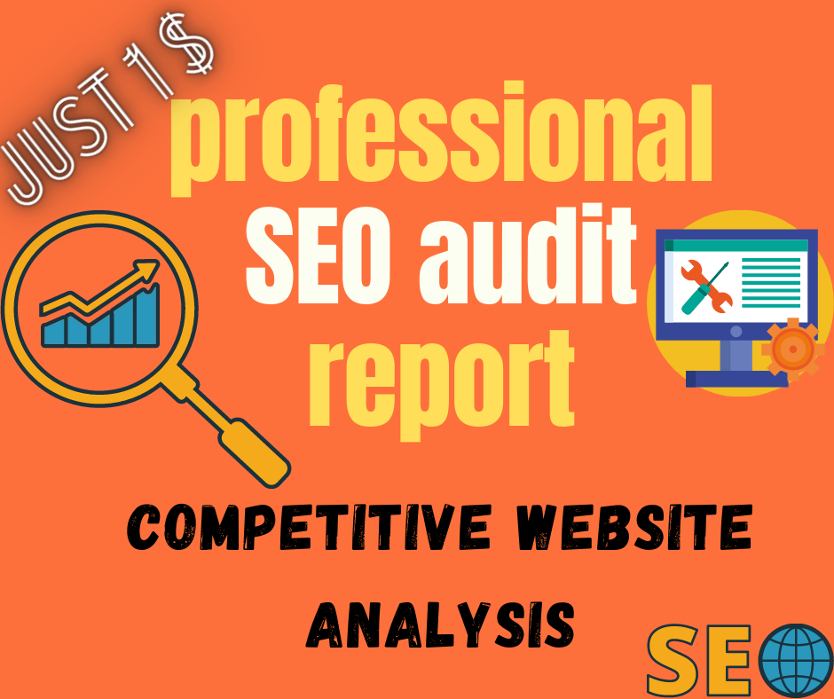 professional SEO audit report and a competitive website analysis