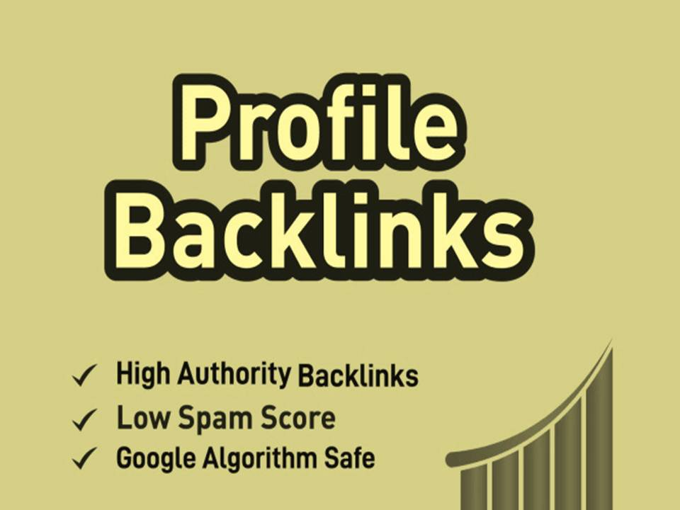 I will Build 100 High Quality High DA Authority Profile Backlinks for off page SEO