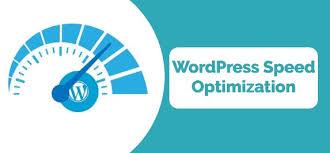 I will do WordPress speed optimization