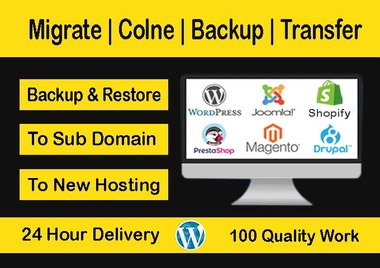 I will migrate,  clone,  backup,  transfer wordpress website,  shopify and any website