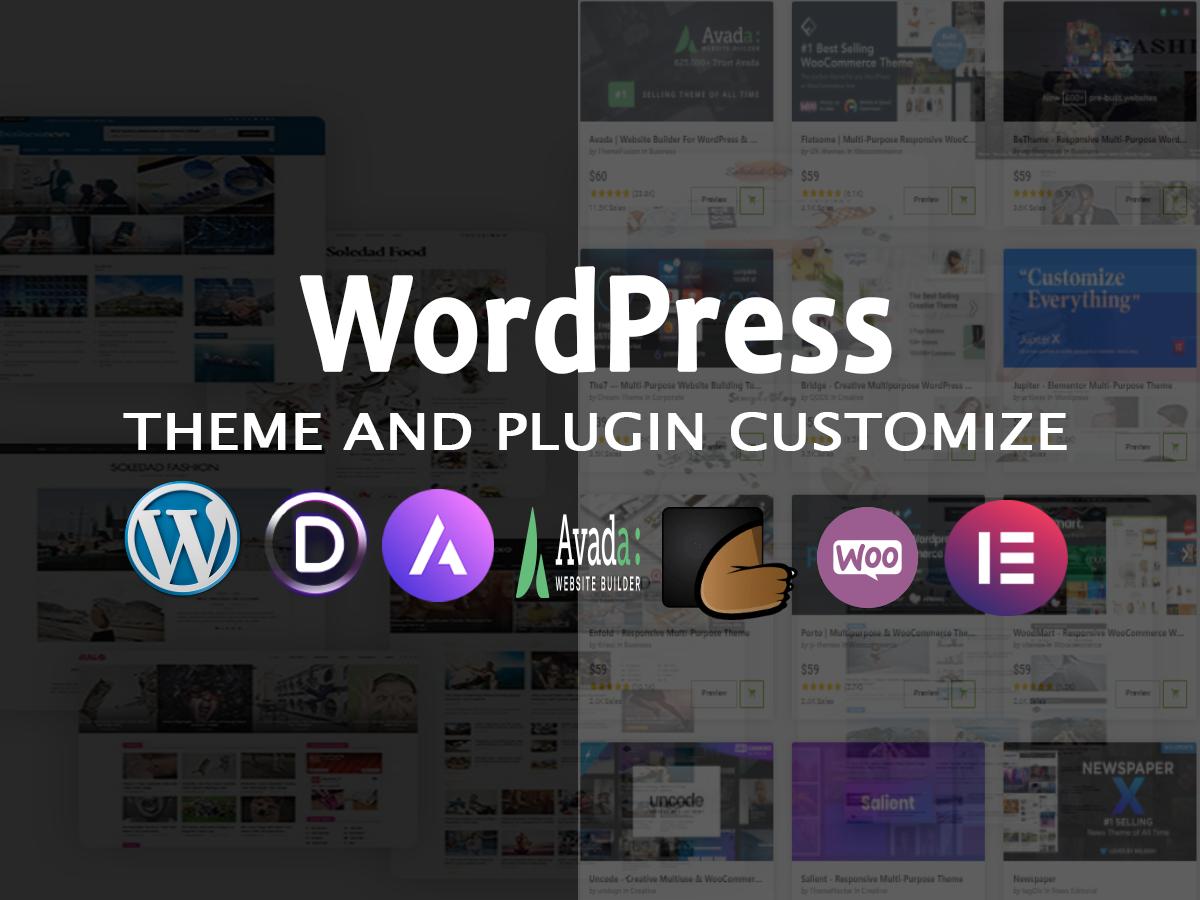 WordPress Premium and free theme customization or WordPress website customization
