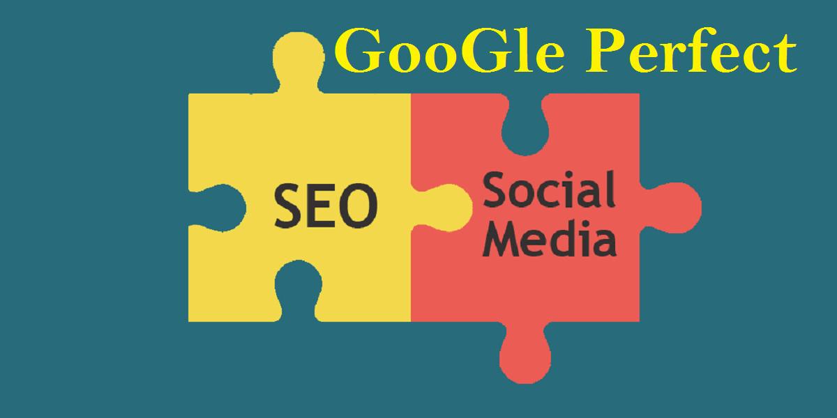 Provide 300+ social media profiles for high da pr SEO backlinks