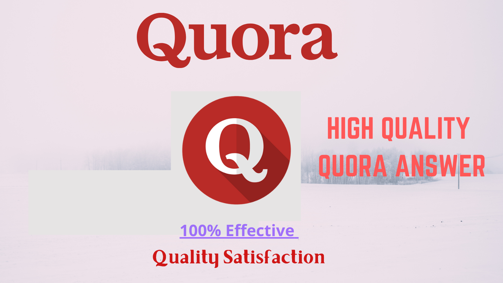 I will Provide 20 High Quality Quora Answer With Backlink