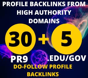 24 hours Delivery 30pr9 +5. Edu/Gov Dofollow DA 90+ SEO profile backlinks