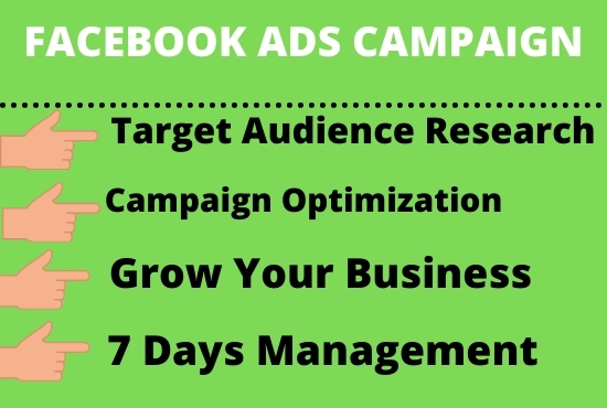 I will set up an advanced Facebook ads campaign for high sales