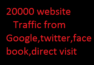 2000 USA keyword targeted web traffic