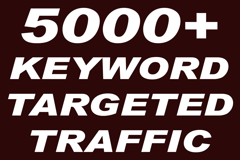 I will send 5000+ keyword targeted google organic traffic