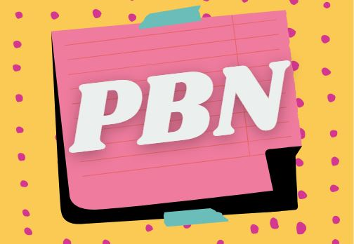 I will provide 10 Unique High Quality Homepage PBN Backlink