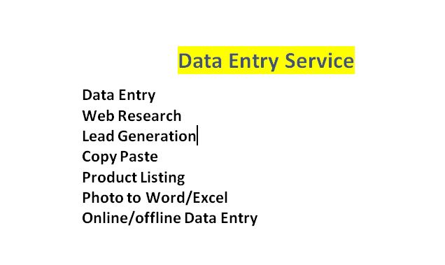 do data entry,  excel data entry,  data mining and copy paste job