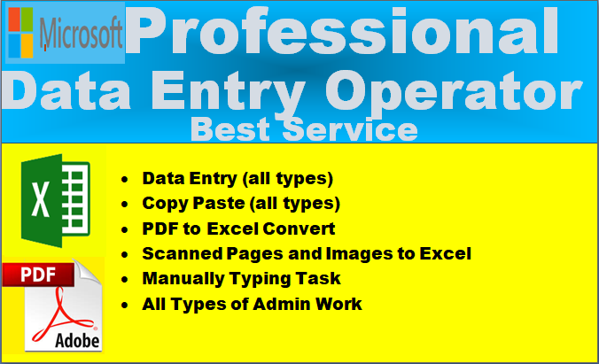I will do excel,  Word data entry,  data entry,  copy paste,  virtual assist