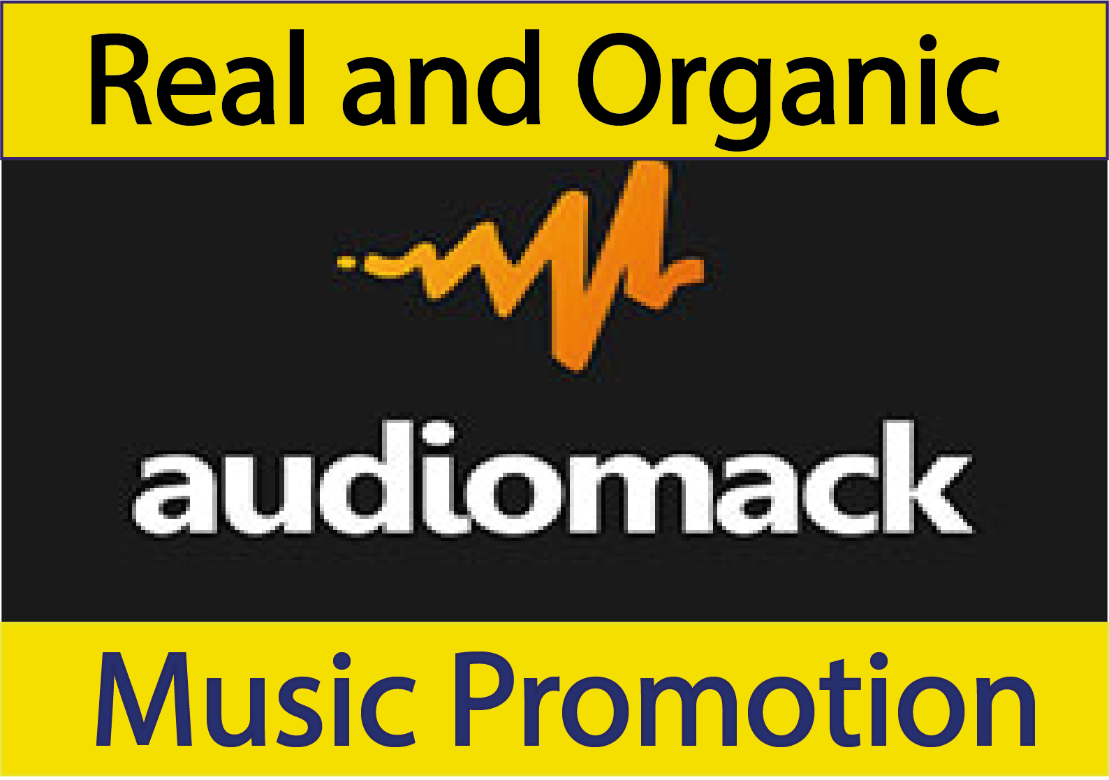 I will provide you Best Audiomack Music Promotion