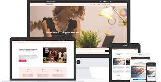 We will setup a blogging website for you