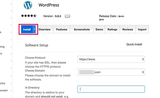 install the WordPress website setup theme and demo upload