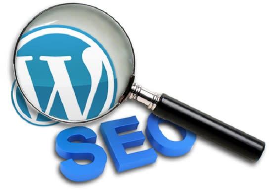 I will do wordpress SEO meta tag optimization alt,  h tags