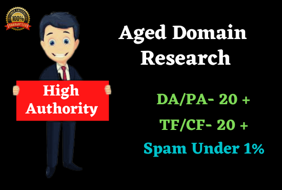 Get 15 DA,  PA High quality aged domain PBN's Backlinks quickly rank your website