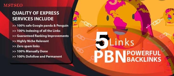 Creat homepage 5 PBN Backlinks to skyrocket you SERP DA 40 to 25+