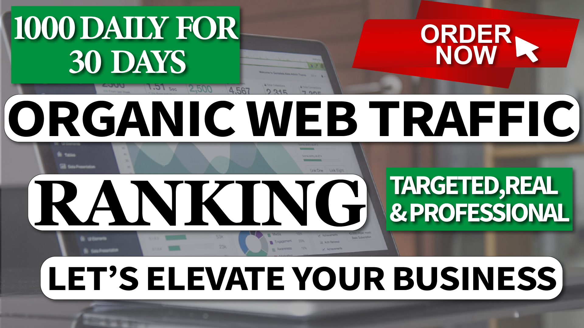 Real Organic traffic throw search engine for 30 days Non Stop